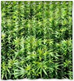 Prime Leader Custom green Marijuana Waterproof Bathroom Fabric Shower Curtain