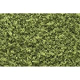 Light Green Coarse Turf (32 oz. Shaker) Woodland Scenics