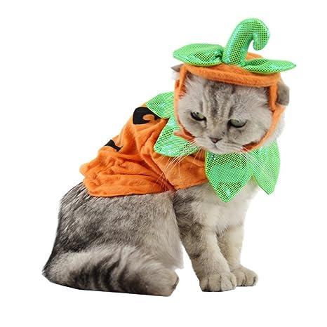 yunt Halloween Disfraz Disfraz Perros y Gatos Disfraz calabaza Disfraz Gatos con ajuste barem banda de