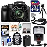 Panasonic Lumix DC-FZ80 4K Wi-Fi Digital Camera with 64GB Card + Backpack + Flash + Battery + Tripod + Strap + Kit