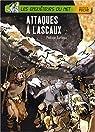 Les enquêteurs du Net : Attaques à Lascaux par Barbeau