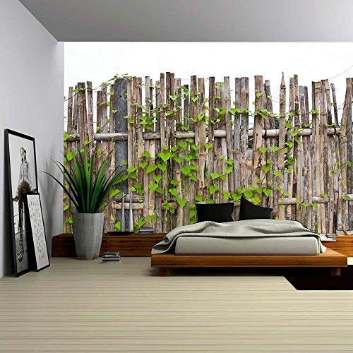 Vine on Bamboo Wall