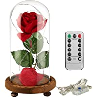 JUN_NUO La Bella e la Bestia Red Petali di Rosa di Seta e Luce a LED con Fallen in Vetro a Cupola su Base di Legno per Donne la Decorazione Domestica