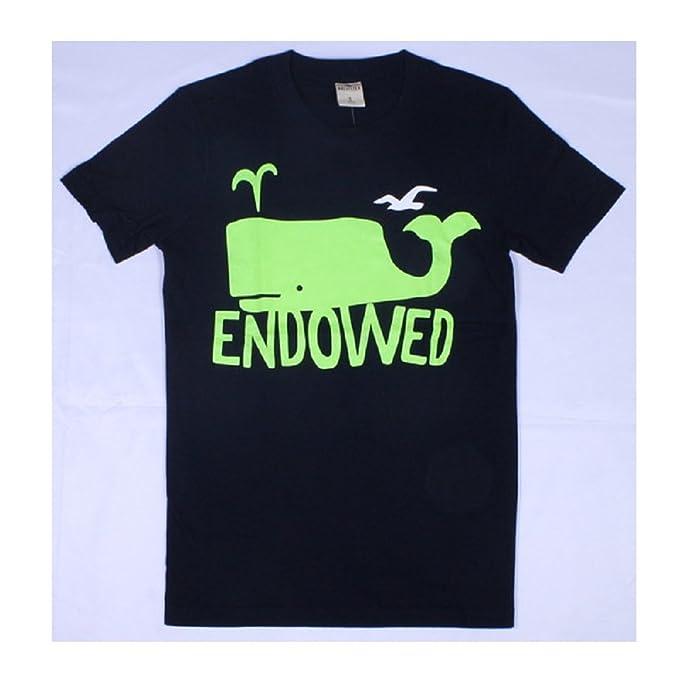 Amazon.com  Hollister HCO Logo Men s Graphic T Shirts Shirt Tee  Books 64f5bfbd1a9d1