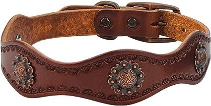 Weaver Leather Sundance Dog Collar