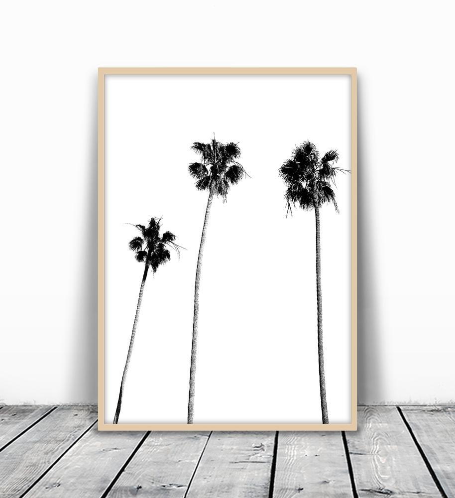 Palm Tree Print, Palm Print, Palm Tree Photography, Black and White, Palm, Palm Tree, Tropical Wall Art, Tropical Decor, Wall Decor, Black and White Palm Tree, Black Palm Tree, Minimalist, 8x10 by MotivatedWallArt (Image #2)