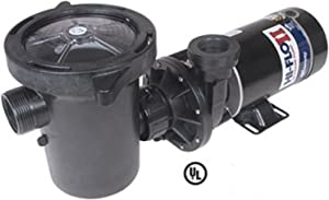 Waterway Plastics PH1150-6 1.5 hp Hi-Flo Above Ground Pool Pump