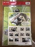 上野動物園ジャイアントパンダシャンシャン一周年記念オリジナルフレーム切手