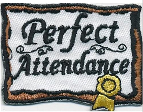 Cub Girl Boy PERFECT ATTENDANCE Embroidered Iron-On Fun Patch Crests Badge Scout Guides
