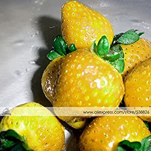 1 Pack Profesional, aproximadamente 200 semillas / Paquete, amarillo dulce fresa alpina de semillas no OGM Orgánica de frutas # NF344
