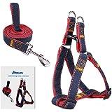 Dog Leash Harness, ARIKON Adjustable and Heavy Duty Durable Denim Dog Leash Collar for Training Walking Running, Best for Large Medium Small Dog