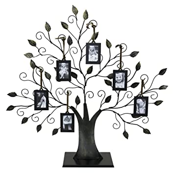Amazoncom Large Bronze Family Tree Of Life Picture Holder With