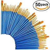 #7: 5 Pack Paint Brush Set, 50 pcs Nylon Hair Brushes for Acrylic Oil Watercolor Painting Artist Professional Painting Kits
