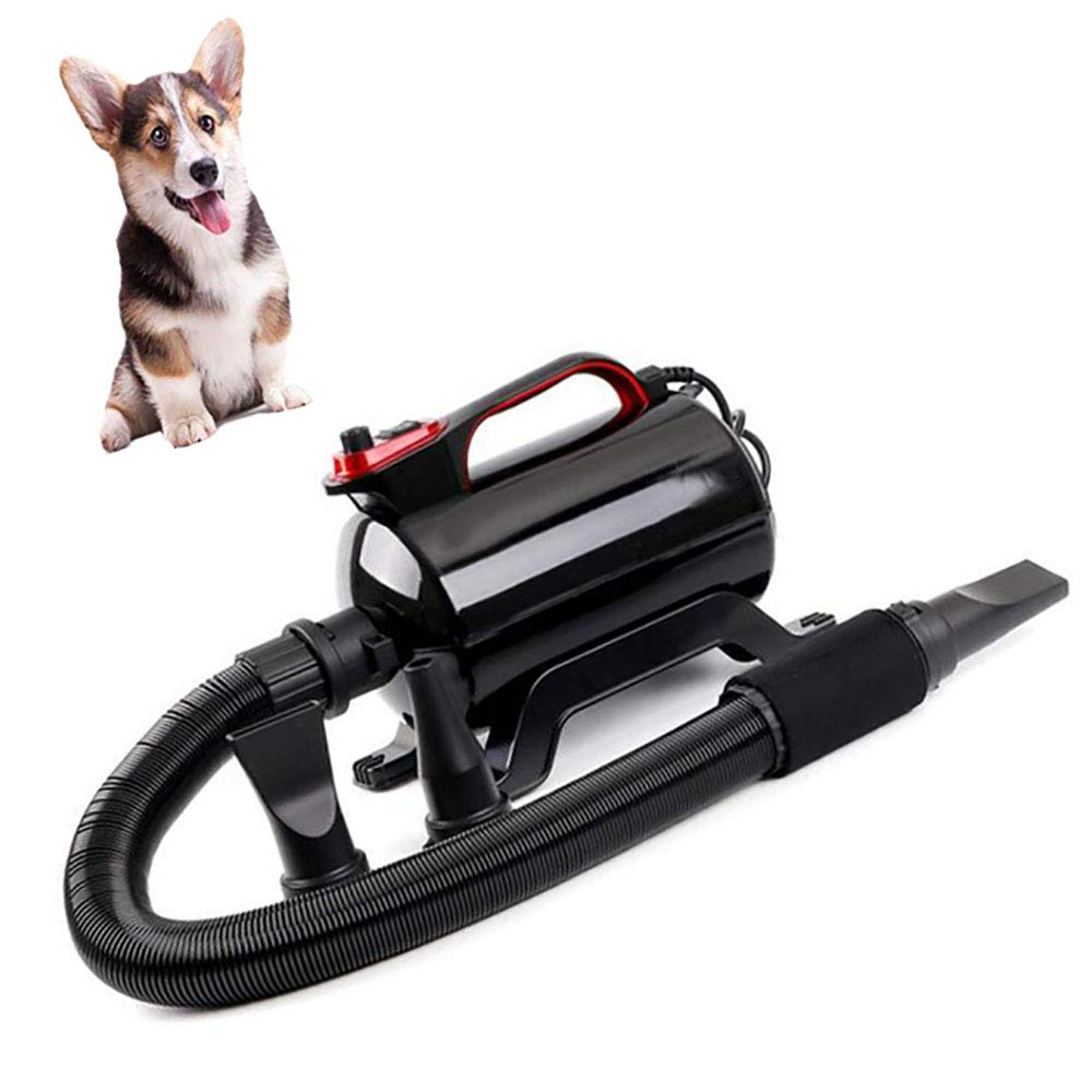 Pet Dog Cat Hair Dryer, Professional Grooming Blower with Heating, for Large Small Dogs Cats, Variable Speed, 2000W (Black)