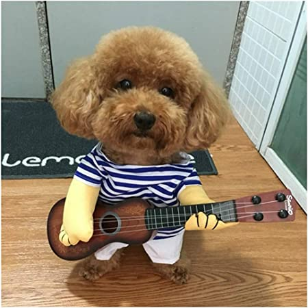 Cute Small Dog Clothes Pet Guitar Clothes Dog Guitarist Dressing Pets  Singer Costume Puppy Playing Guitar Costume Party Halloween,M:  Amazon.co.uk: Kitchen & Home