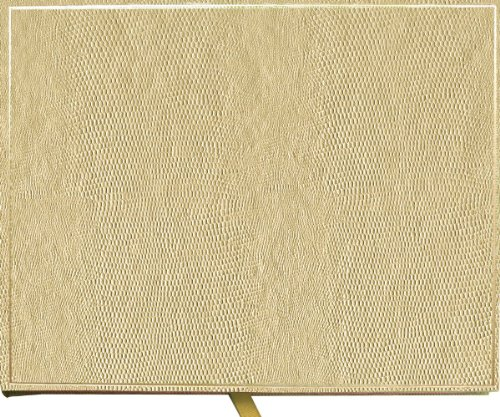 Entertaining with Caspari Lizard Guest Book, Platinum, 7-Inches by 9-Inches by 1-Inch, 1-Count