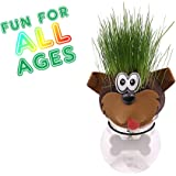 Grass Head - Funny Fast Growing Grass Head Learning Toy for Kids by AvoSeedo (Mixed Animal Heads)
