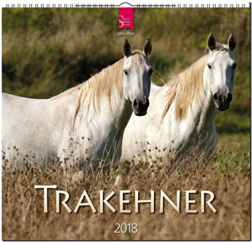 TRAKEHNER: Original Stürtz-Kalender 2018 - Mittelformat-Kalender 33 x 31 cm