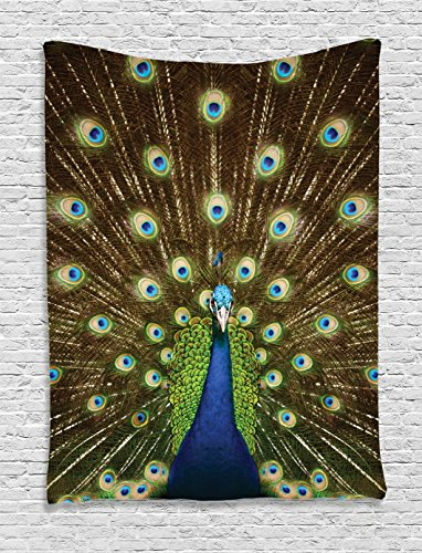 ry Wall Hanging By Ambesonne, Portrait Of Peacock With Feathers Out Vibrant Colors Birds Summertime Garden , Bedroom Living Room Dorm Decor, 60 W x 80 L Inches (Out Wall Tapestry)
