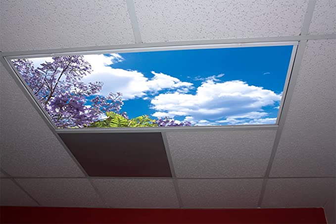 Fluorescent Light Covers >> Jacaranda Tree Skypanels Replacement Fluorescent Light Diffuser