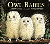 img - for Owl Babies by Martin Waddell (4-Jun-2015) Board book book / textbook / text book