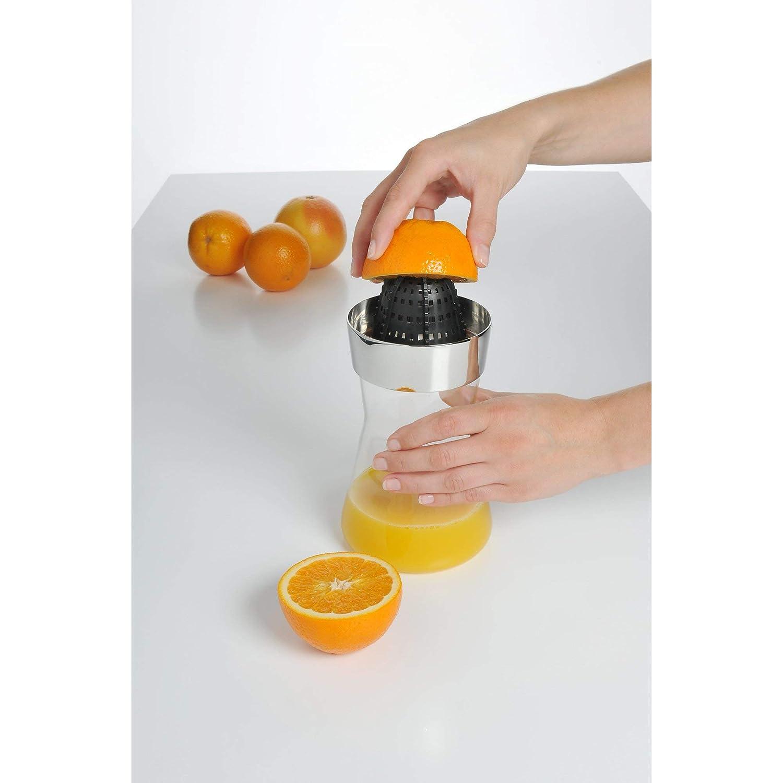 Compra WMF - Exprimidor de limones, color plateado, colección Basic en Amazon.es