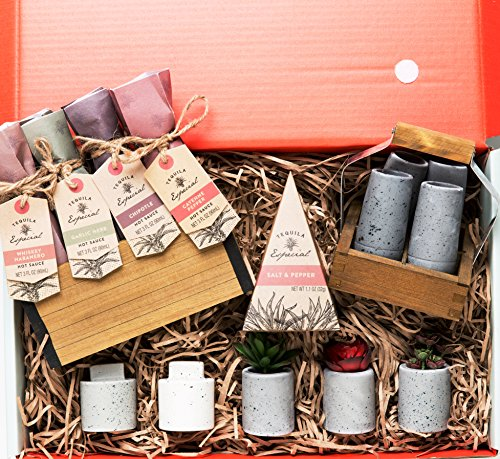 Mexican Riviera Hot Sauce Collection A Thoughtfully Gift Box Four Spicy Sauces Chipotle, Garlic, Cayenne, Whiskey Habanero & 4 Tequila Sipping Glasses Wood Shot Glass Carrier & Succulent Plants