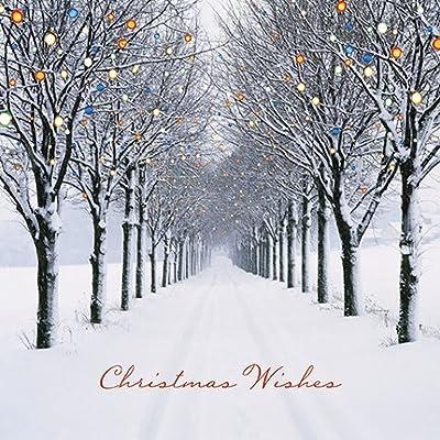 3f0fbd92aaed9 Caja de tarjetas de Navidad - Christmas Avenue - 16 brillo