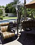 AZ Patio Heaters Natural Gas Patio Heater in