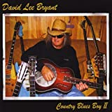 Country Blues Boy 2 by David Lee Bryant