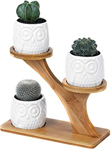KuLaYu Innovative Room Succulent Plants Modern Style Ceramic Flower Pot Succulent Planter Garden Planter with Bamboo Shelf for Home Bedroom Living Room Garden Balcony Decor