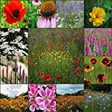 Deer Resistant Wildflower Seed Mix - 5 Lb