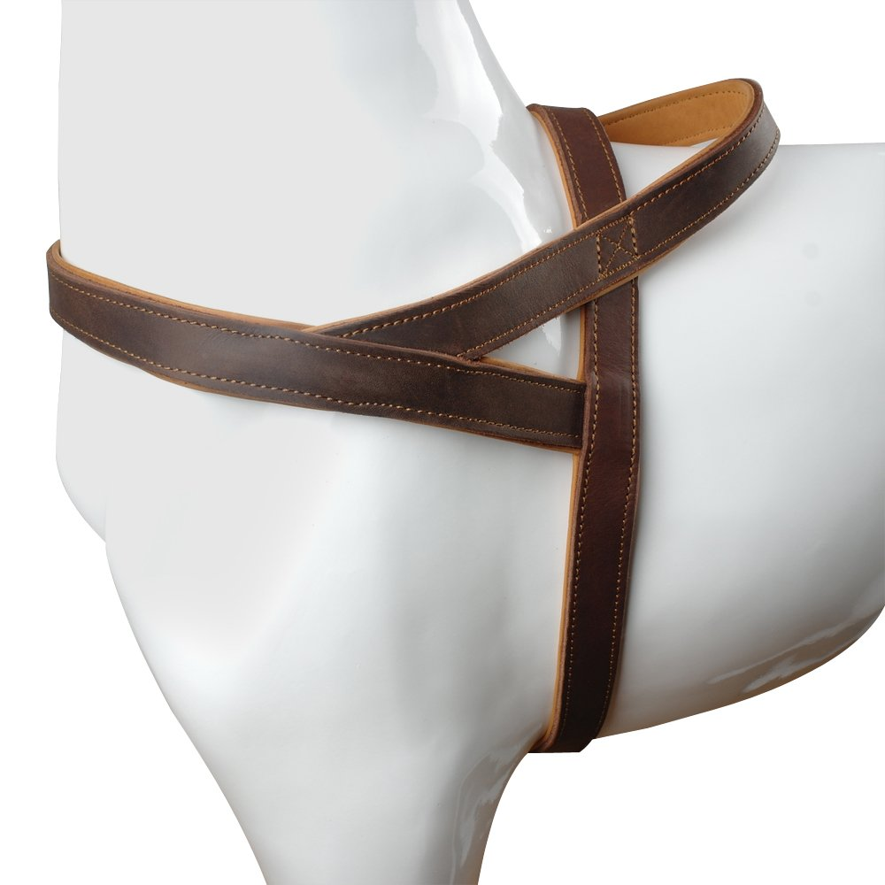 Beirui Brown 1'' Width Genuine Leather Soft Padded Dog Harness - No Escape Heavy Duty for Labrador German Shepherd Medium Dog Chest Size for 30''-34'' by Berry Pet