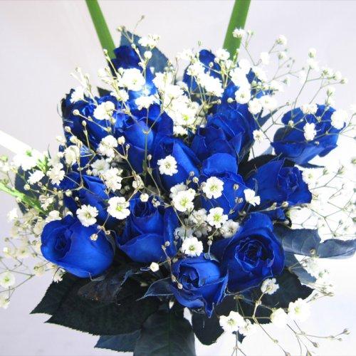 ブルーローズの花束 青いバラ20本&カスミ草、グリーン付き バラの花束【生花】【お祝い記念日誕生日フラワーギフトバラ】 B001Q6ZQ8S