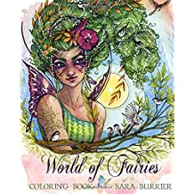 World of Fairies Coloring Book