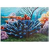 Coral Reef Background - 20 gal