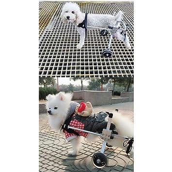Silla De Ruedas para Perros, Rehabilitación De La Pierna Trasera Ejercicio Scooter para Mascotas Asistencia De Discapacidad Gato Peluche Perro Pequeño ...