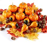Factory Direct Craft Falls Bounty Decorating Kit of Artificial Pumpkins, Leaves, and Gourds