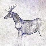 【メーカー特典あり】 馬と鹿 (映像盤(初回限定)) (CD+DVD(紙ジャケ)) (内容未定特典付)