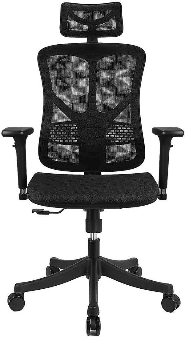 Argomax Ergonomic Mesh Office Chair High Back with Adjustable Headrest Tilt Back Tension Lumbar Support 3D Armrest Seat High End Argomax Computer Desk Chair 360 Swivel Self Classic Black