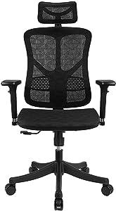 Ergonomic Mesh Office Chair High Back with Adjustable Headrest/Tilt Back/Tension/Lumbar Support/3D Armrest/Seat High End Argomax Computer Desk Chair 360 Swivel Self (Classic)