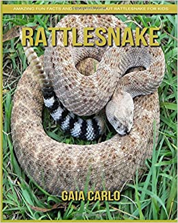 Rattlesnake: Amazing Fun Facts and Pictures about