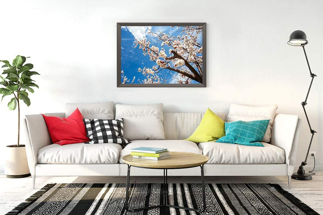 DIY 5D Diamond Painting Kits Flowers Soft Focus Spring White Tree Branch Apricot Full Drill Embroidery with Diamond for Home Wall Decor Gift 14X20 Inch