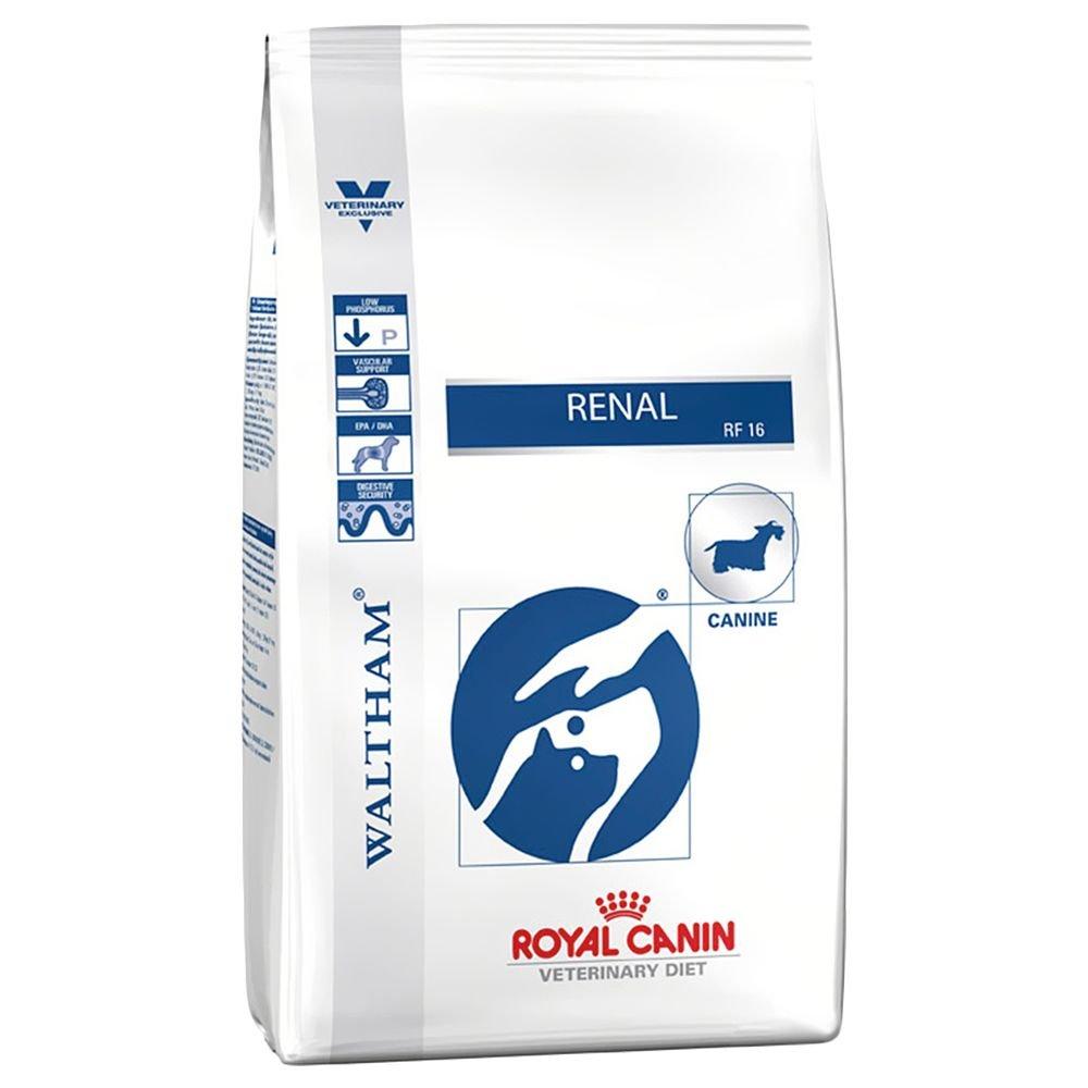 ROYAL CANIN Alimento para Perros Renal RF16-2 kg: Amazon.es: Productos para mascotas
