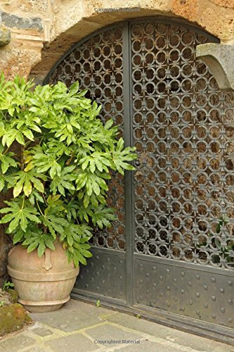 Lush Large Plant in a Terracotta Pot and a Decorative Iron Gate Journal: 150 Page Lined - Gate Garden Courtyard
