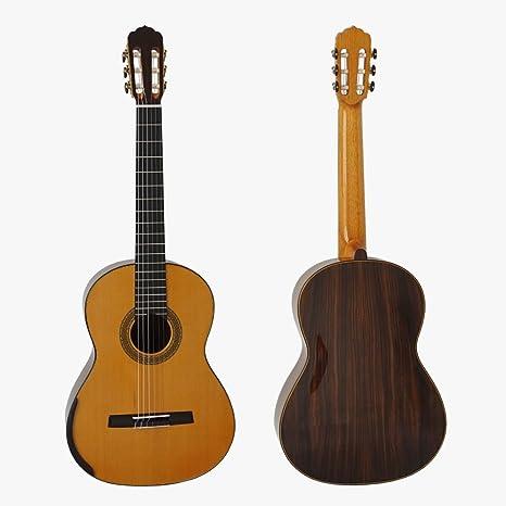 Aiersi marca Master nivel Smallman guitarra clásica por Master ...