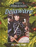 img - for Delaware: The First State (Guide to American States) book / textbook / text book