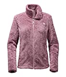 The North Face Women's Osito 2 Jacket Amaranth Purple/Burnished Lilac Stripe Outerwear