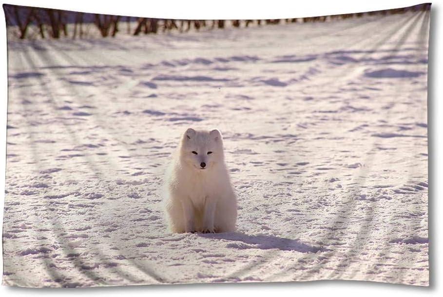 EGOTOU Polar Fox Arctic Fox Snow Wall Tapestry Home Decor Art Wall Hanging Tapestries 30x45 inch