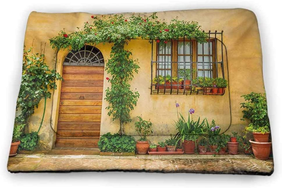 DayDayFun Italian Cute Pattern Pet Mat Terrace Promenade Balcony and Pine Trees in Bolsena Lake Italy Print Pet Mats for Food and Water Blue and Pale Brown